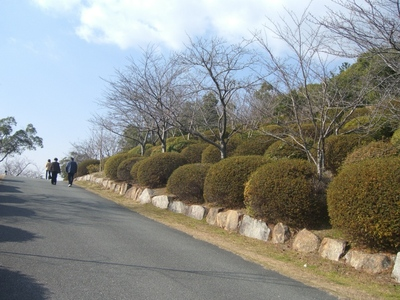 20100120_039
